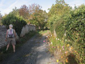 chemin de randonnée de Nieul